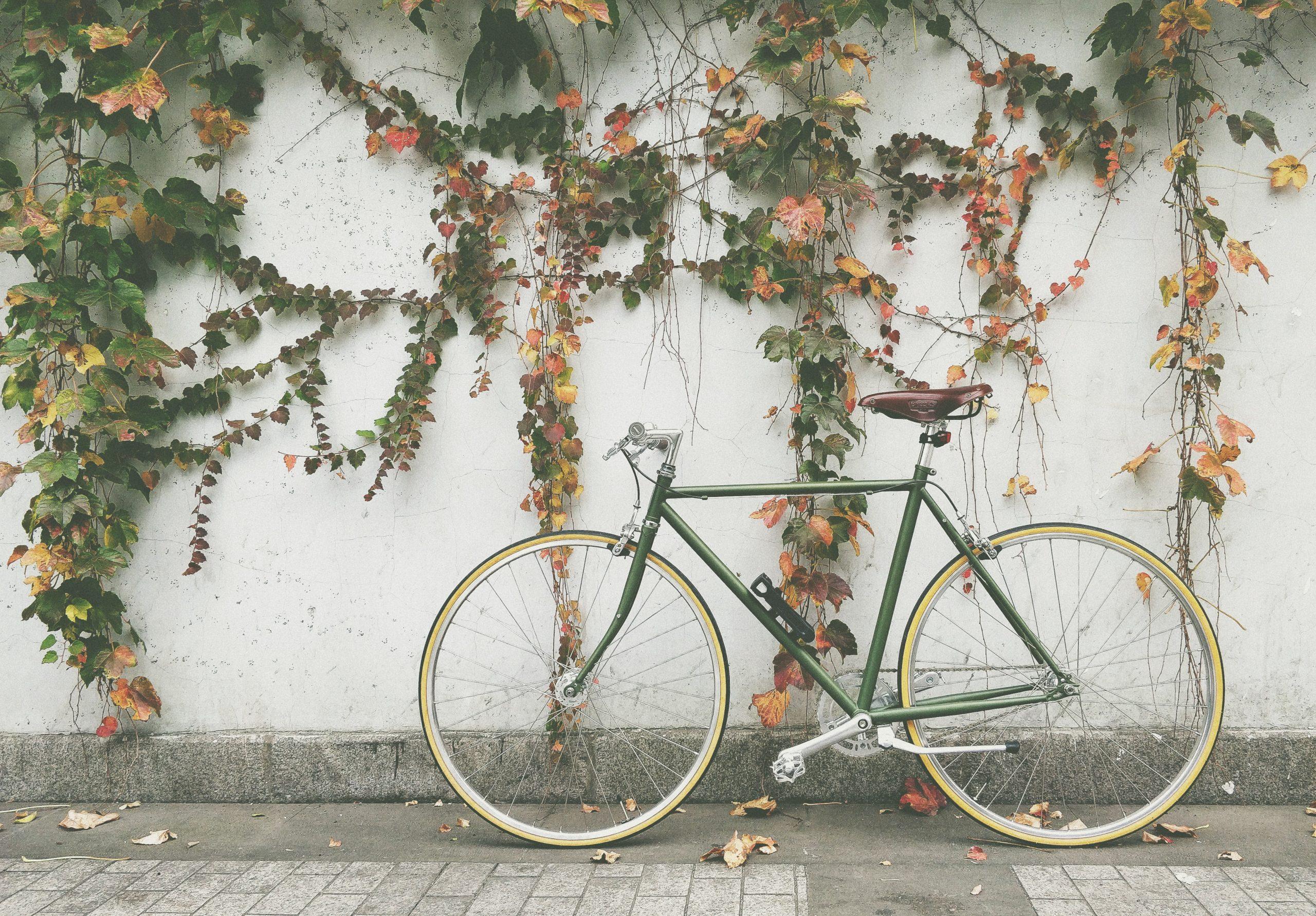 Hvilket mærke indenfor cykelhjelme skal du have?